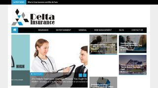 Guest Post on Delta Insurance