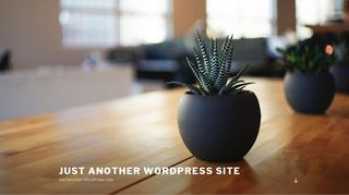 Guest Post on Just another WordPress si