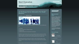 Guest Post on Next Executive