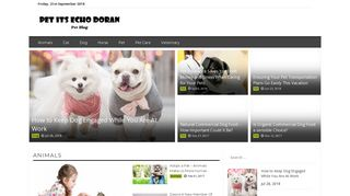 Guest Post on Pet Its Echo Doran