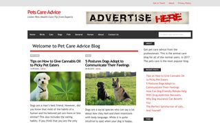 Guest Post on Pets Care Advice