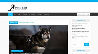 Guest Post on Pets Gift