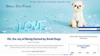 Guest Post on Smalldogplace