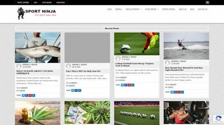 Guest Post on Sport Ninja